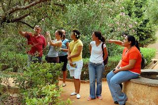 Hablando en verde anuario 2008 for Asociacion pinar jardin