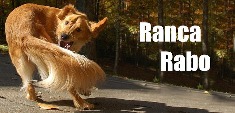 Ranca Rabo -  Aqui todo rabo é bem vindo