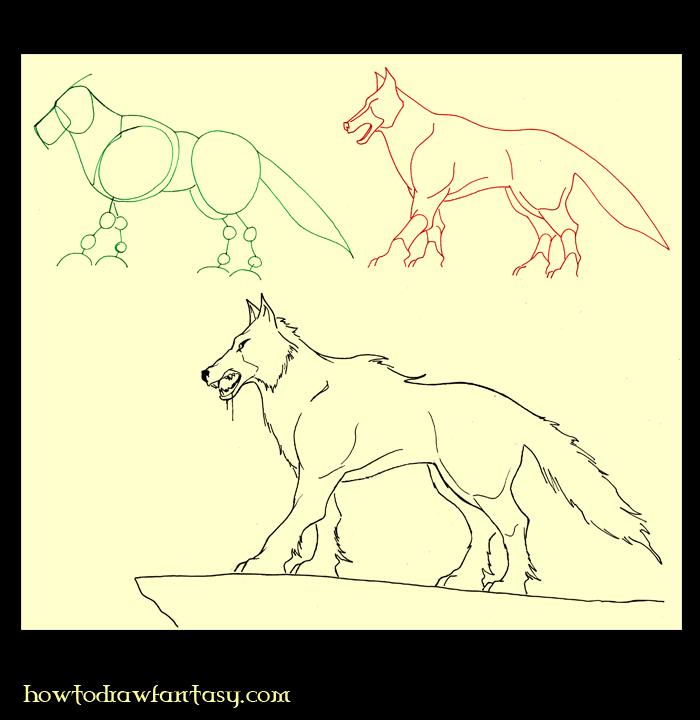 A propos cap comment apprendre la photo comment party - Loup a dessiner ...