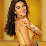 Asin Roped In To Marmayogi