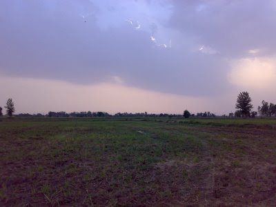 loneliness, nature, jungle, planes, clouds