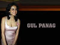 Gul Panag Photos