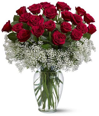 Quieres saber lo que dicen las flores