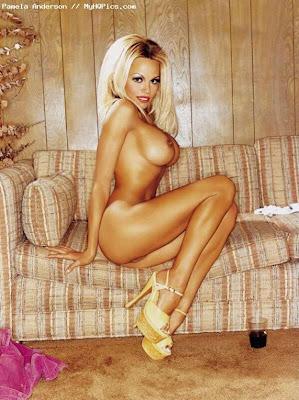Nude Pamela Anderson Naked