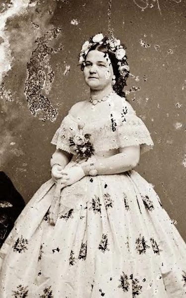 Mary Todd Lincoln, Abe's wife