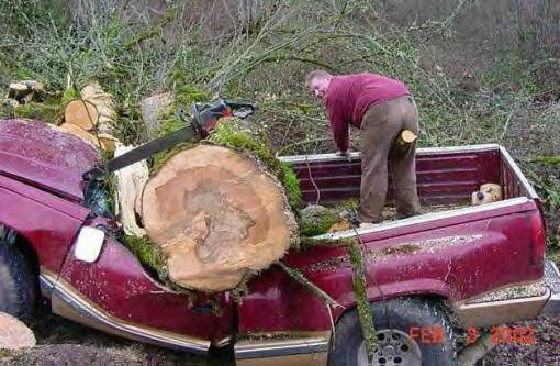 Be careful when cutting down trees. And don't park too close to the work site