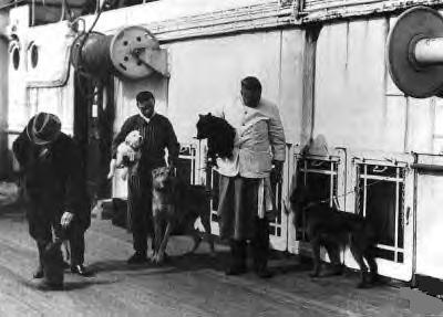 Perros en el Titanic