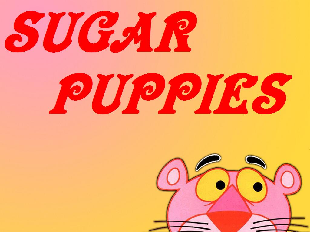 SUGAR PUPPIES