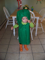 how to make a pickle costume