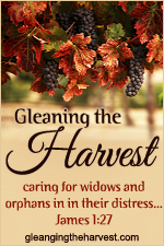 Gleaning the Harvest