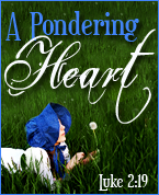 A Pondering Heart