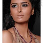 Hot & Sexy South Indian Actress Meenakshi Dixit Exclusive Portfolio  Photos...