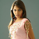 Sexy South Indian Telugu Actress Madhu Shalini Exclusive Photo  Gallery...