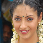 Sexy South Indian Actress Gurlin Chopra From The Telugu Film  Konaseemalo Chittemma Kittaiah Photo Gallery...