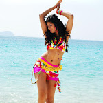 Hot And Sexy Babe Malishka Wet On Beach In Spicy Dress Hq Pics Collection...