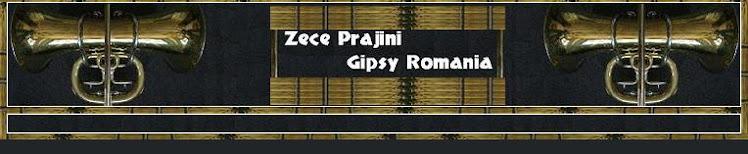 Gipsy Music romania