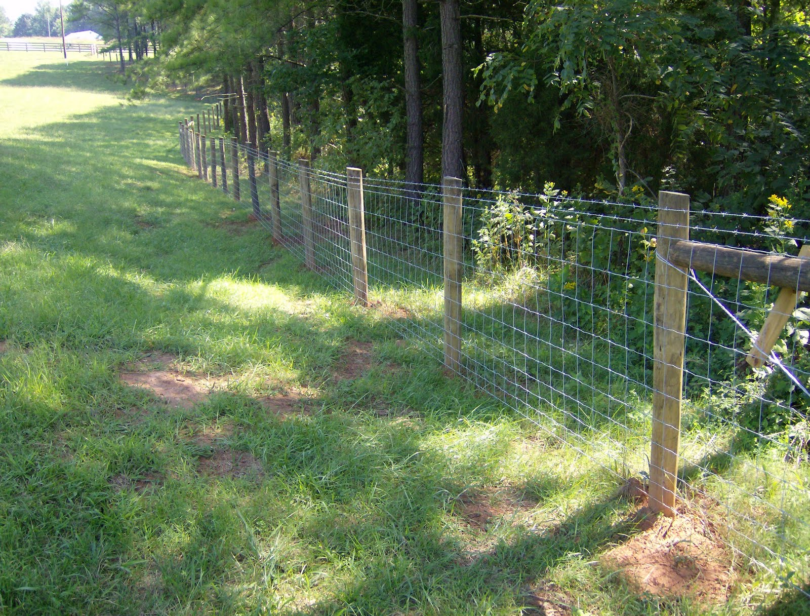 Larry Chattin & Sons: Farm fencing