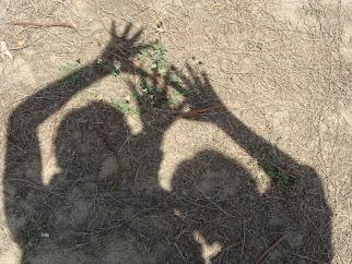 shadows of merriment