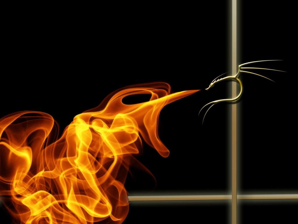 http://4.bp.blogspot.com/_FmAfTWqiDd8/S-xYFF5duzI/AAAAAAAAAK8/Qt4dJX28VeA/S1600-R/fogo-2641.jpg