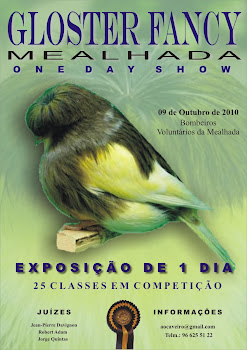 Gloster Fancy Mealhada One Day Show