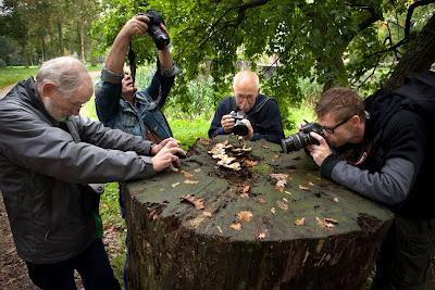 Vier fotografen in actie tijdens het fotoweekend