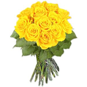 Beautiful Yellow Roses Pics