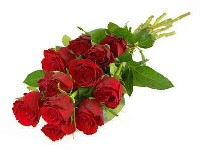 Gift red rose picture