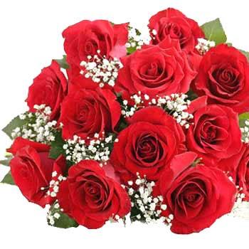 Dozen of beautiful red roses wallpaper
