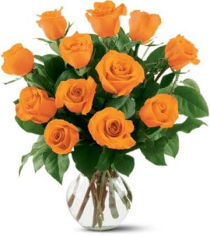 Group of Orange rose pics