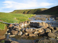 Swimming pools and natural thermal pools around Iceland