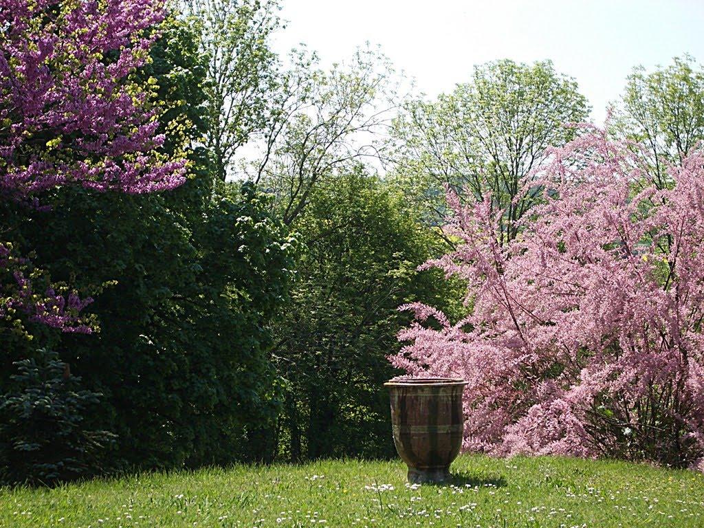Le blog de theoliane les couleurs du printemps - Couleur du printemps ...