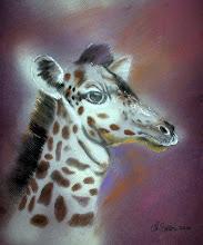 My Pastel Giraffe