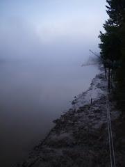 Carole in fog