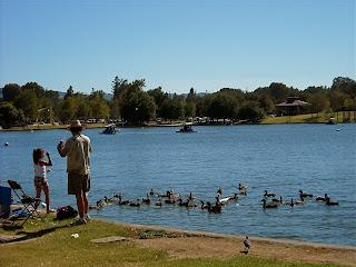 Los angeles love affair lake balboa for Balboa lake fishing