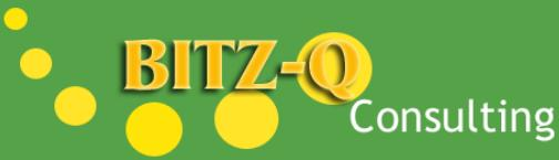 BITZ-Q Consulting
