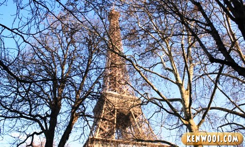 paris eiffel tower with trees