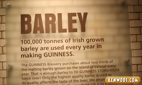 guinness barley display