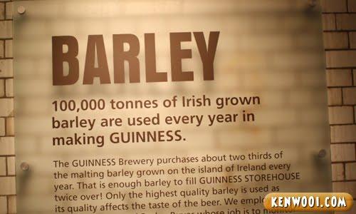 guinness barley display