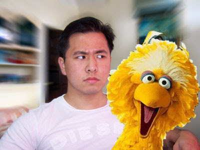 kennysia big bird