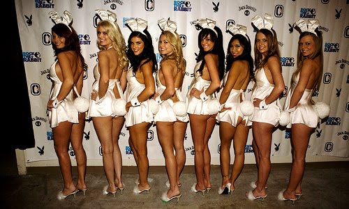 playboy white bunnies