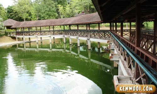 langkawi crocodile farm inside
