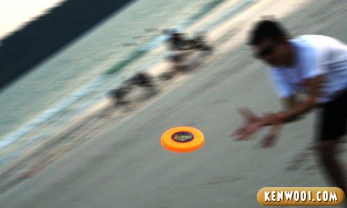 frisbee at beach