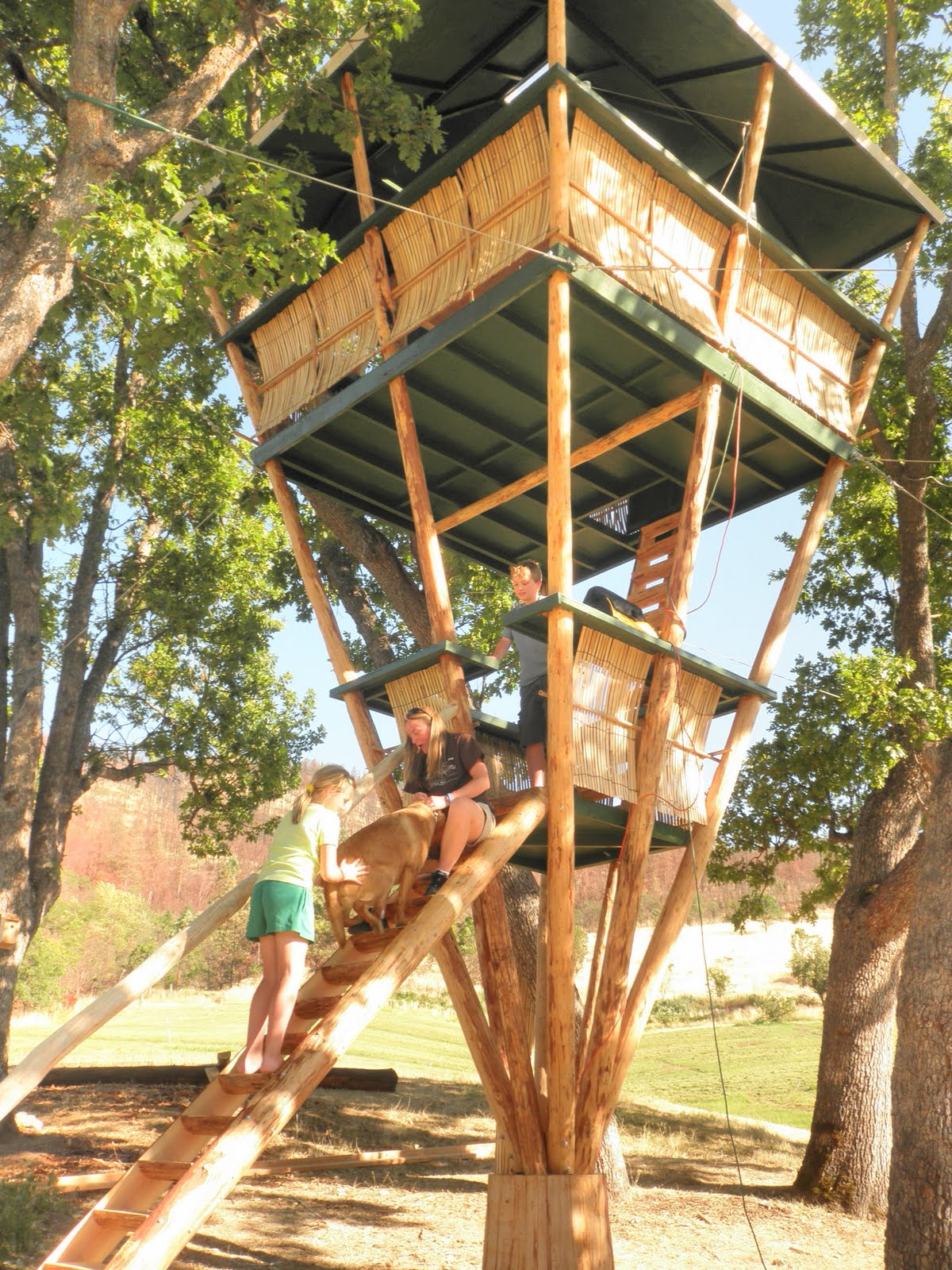 Bamboo treehouse for Tropical kit homes