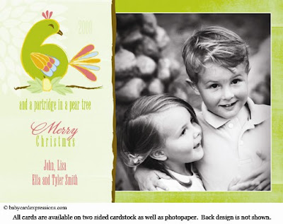 Partridge in a Pear Tree Christmas Holiday Photocard
