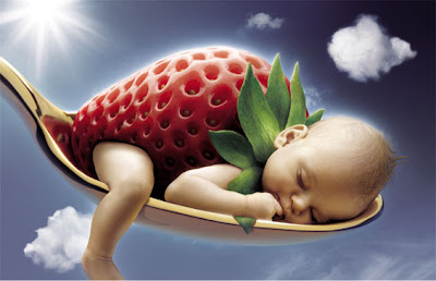 Creative Photo Manipulations | Quality images | Design