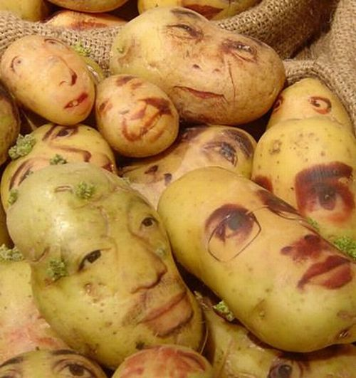 [potato_portraits_05.jpg]