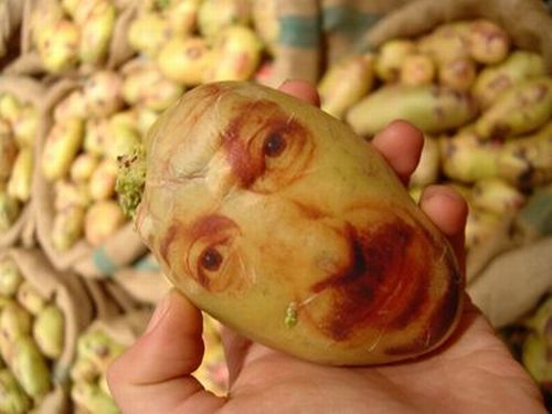 [potato_portraits_01.jpg]