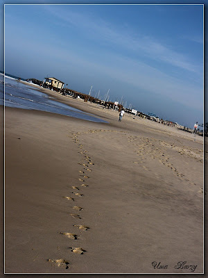 море, пляж, берег