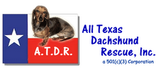 HELPING DACHSHUNDS ALL OVER TEXAS