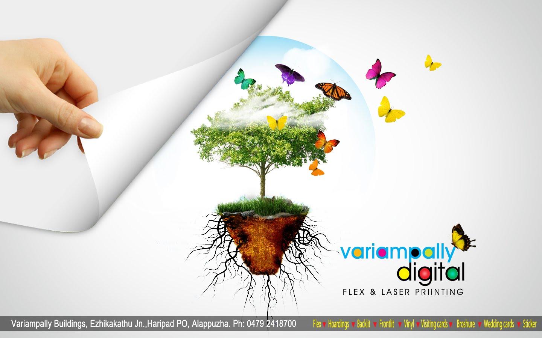 http://4.bp.blogspot.com/_G0P8HcPt2UM/TGKsNkJN2cI/AAAAAAAAArI/zskStOXuxBY/s1600/tree+copy.jpg